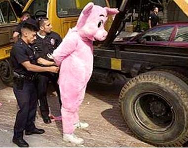 Arrestgris